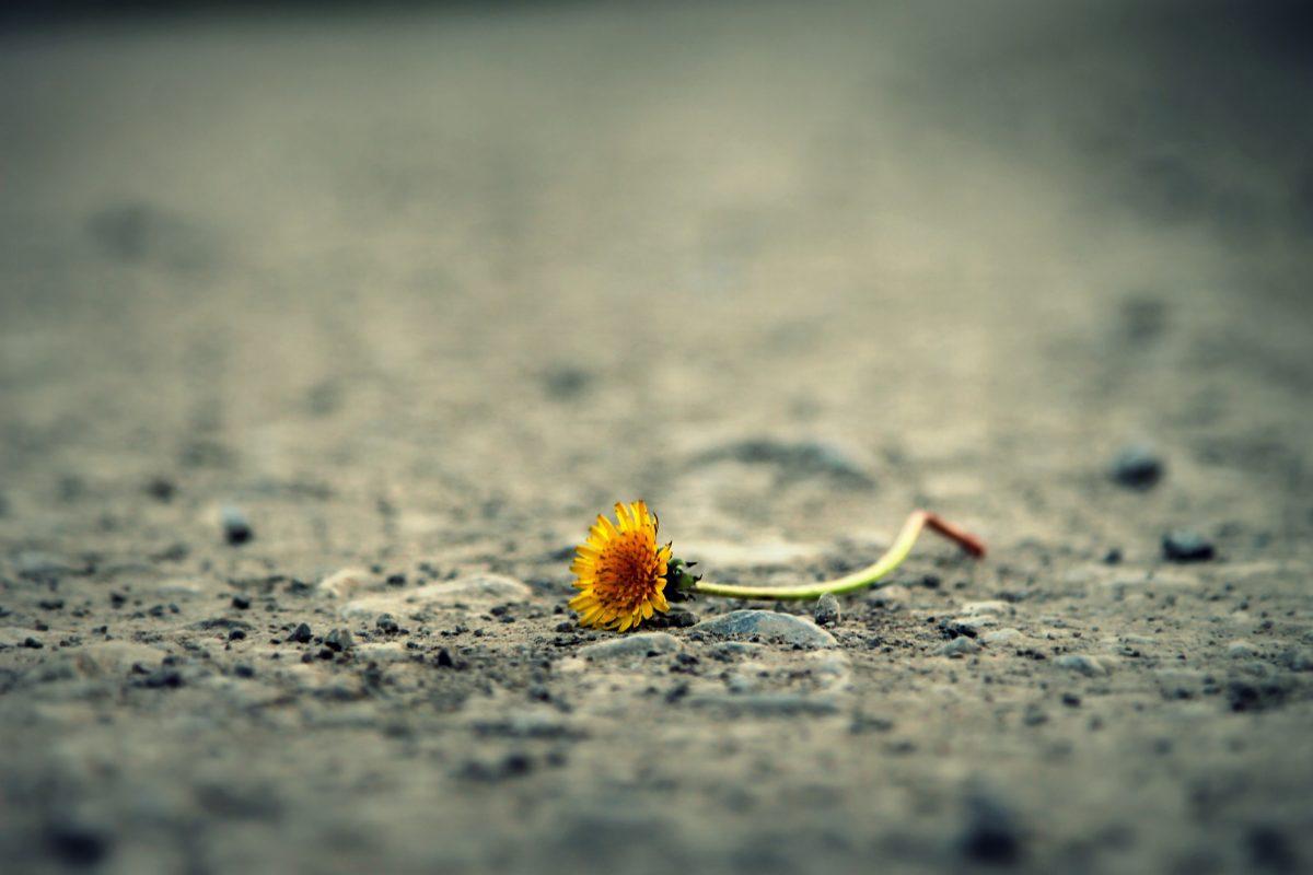 Traurigkeit kommt und geht