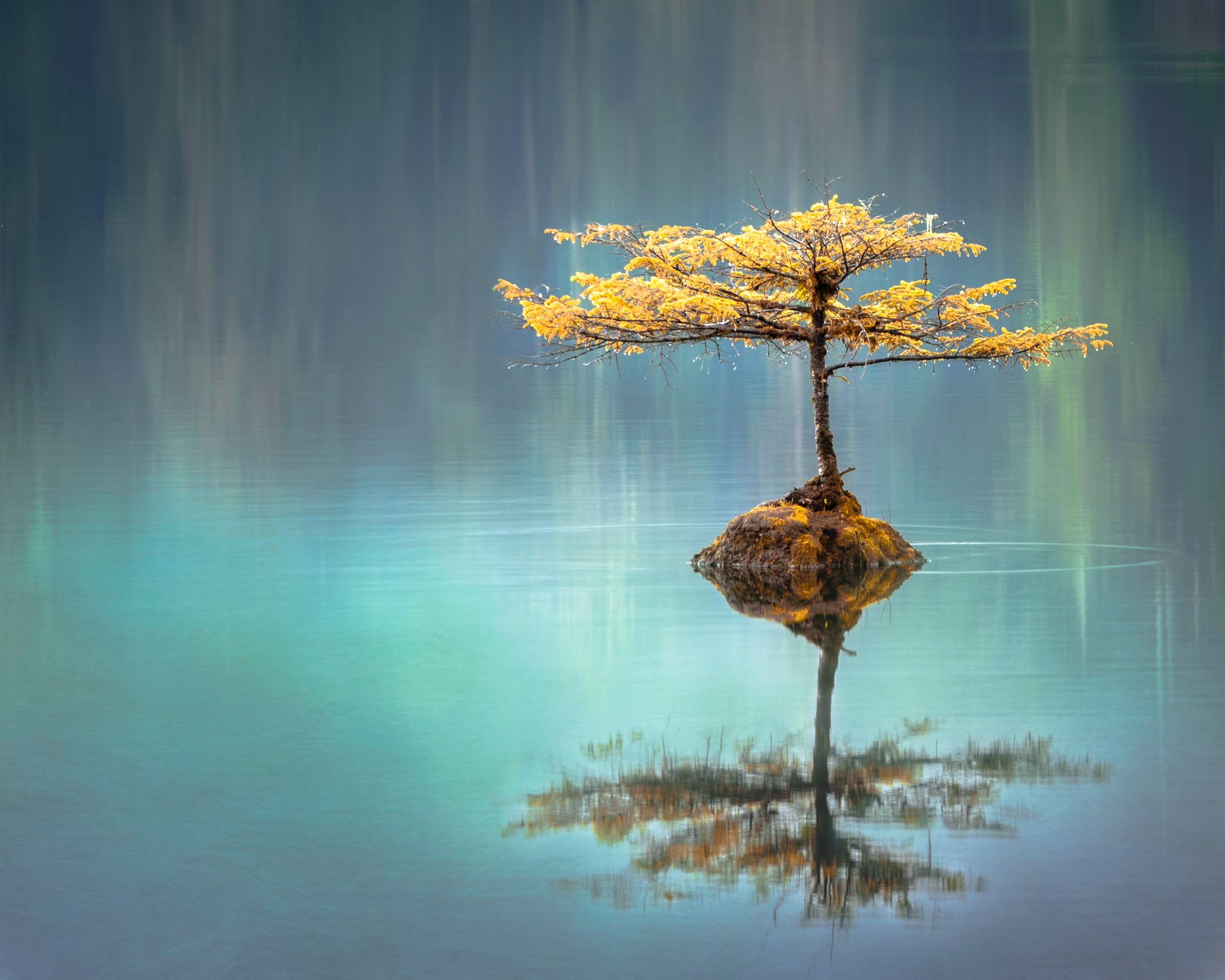 Meditation - Welcome Weekend - wöchentlich ab 31. Jan. 2020